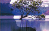 رودخانه وجود       کتابی از محبوبه سادات محمودی
